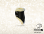 FETLOCK BOOTS - WITH REMOVABLE PADDING