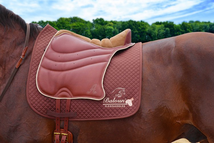 Academic pad - special - chestnut smooth leather + nougat velour leather on the horse with saddle pad Baloun