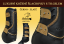 Tendon&Fetlock boots Baloun® -  made of black leather and gold design leather