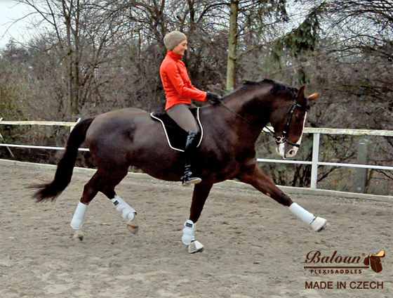 Fully gelled riding pad Baloun® on the horse. Rider is Adela Neumannova