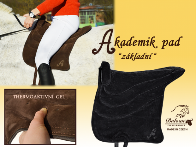 Accademic pad - basic on the horse, with thermoactive gel