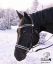 BRIDLE - with white padding