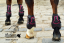 Pony tendon & fetlock boots Baloun® made of black leather with pink design leather and Swarovski crystals