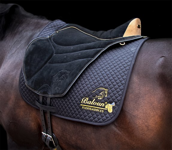 Black saddle pad Baloun® with gold embroidery and Trekking pad-extra limited edition